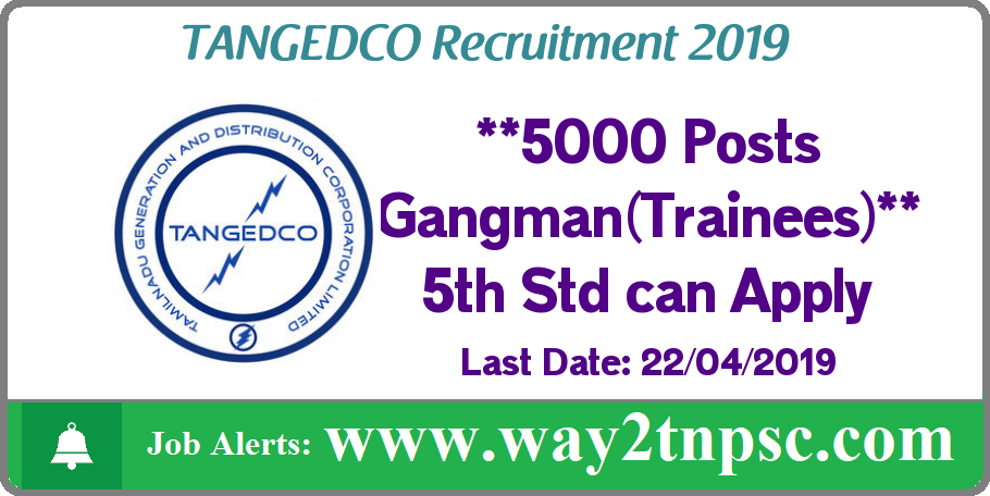 TNEB TANGEDCO Recruitment 2019 for 5000 Gangman (Trainee) Posts