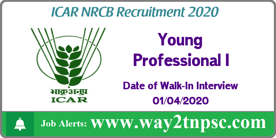ICAR NRCB Recruitment 2020 for Young Professional I Posts