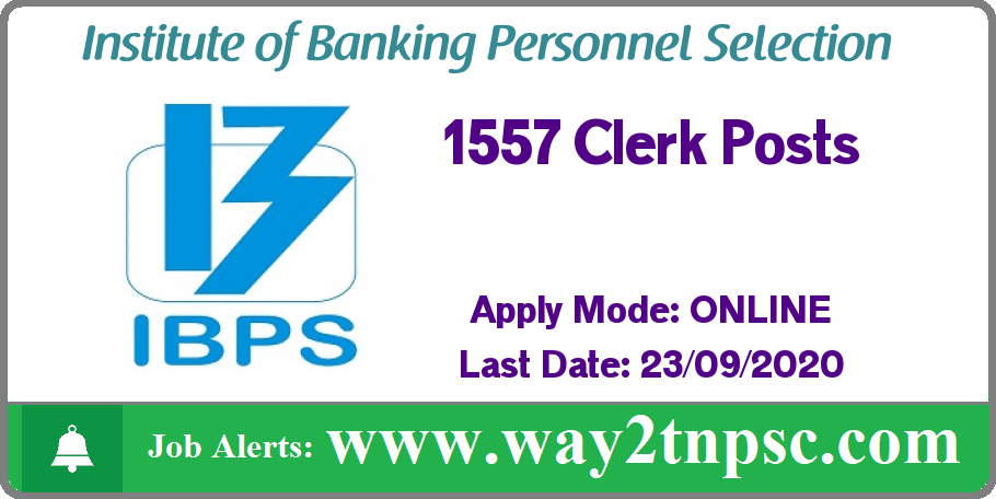 IBPS Recruitment 2020 for 1557 Clerk Posts